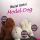 MODEL DOG SOLO TESTA