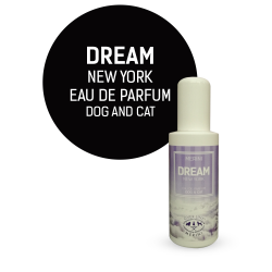 PROFUMO DREAM 100 ML