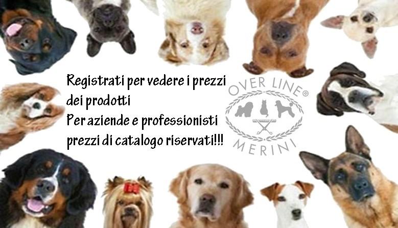 OverLine Merini
