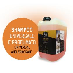 SHAMPOO PROFUMATO 10 L