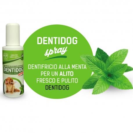 DENTIFRICIO SPRAY 100ML